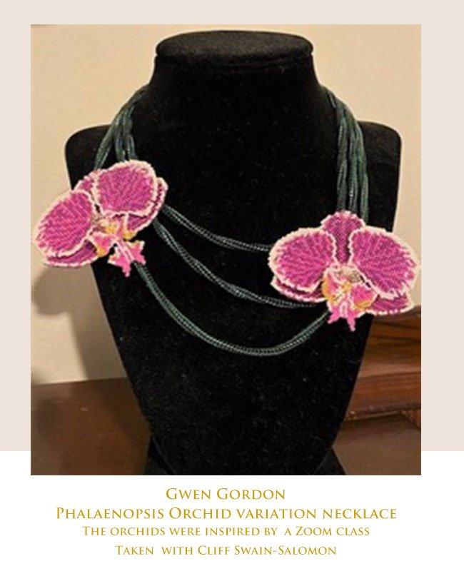 GGordon-Phalaenopsis